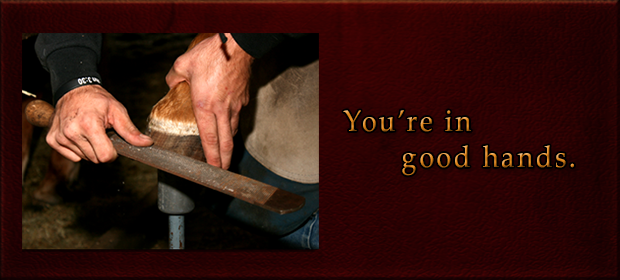 Farrier You're in good hands.