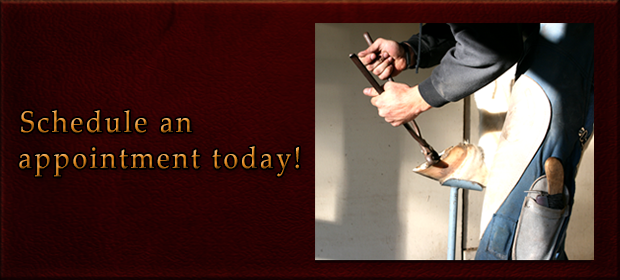 Farrier Schedule an appointment today!