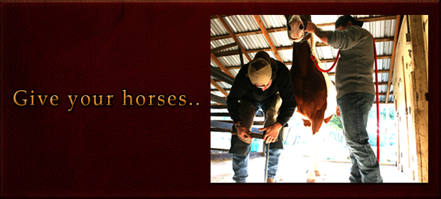 Farrier Give your horses